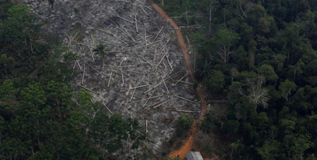 -An aerial view of a deforested area of the Amazon rainforest in Brazil (CNS/Nacho Doce, Reuters)