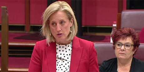 Senator Katy Gallagher announces six recommendations from the initial Senate Inquiry into COVID 19 (ABC News)