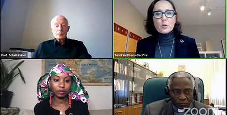 Screenshot of speakers during the Vatican climate webinar (Vatican News)